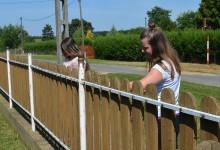 Diákok keze alatt szépül Zalaboldogfa környezete