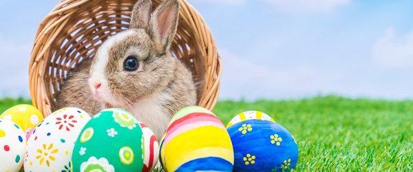 Húsvéti tojás festő verseny